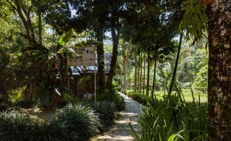 Walk through the Ecolodge Garden.