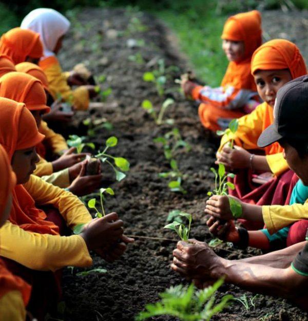 Eco-Farming Center