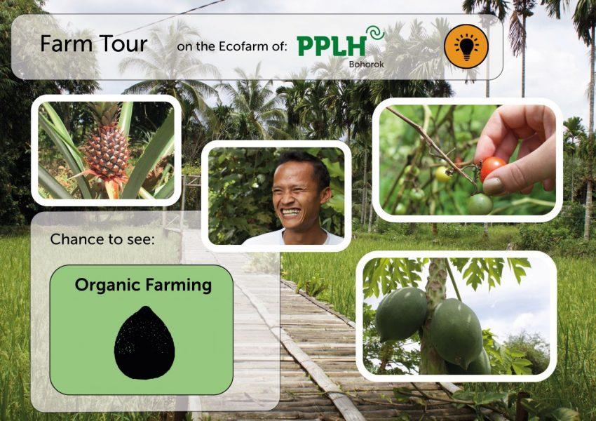 Farmtour_V2_pic_website